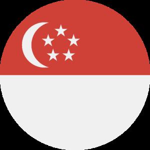 flags-sg